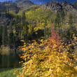 Fall Colors Yellow Mountain Lake Leavenworth Washington — Stock Photo #6187021