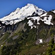 Mount Baker from Artist Point Washington State — Stock Photo