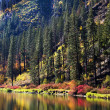 Stock Photo: Fall Colors Wenatchee River Reflections Yellow Mountain Leavenwo