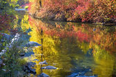 Deep Fall Colors Wenatchee River Stevens Pass Leavenworth Washin — Stock Photo