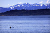 Kayak Puget Sound, Olympic Mountains Edmonds, Washington — Stock Photo