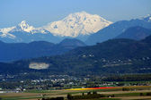 Snowy Mount Baker at Tulip Time — Stock Photo