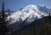 Mount Rainier Sunrise Snow Mountain — Stock Photo