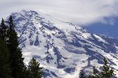 Mount Rainier with Eagles — Stock Photo