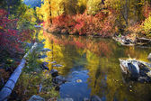 Fall Colors Rocks Wenatchee River Stevens Pass Leavenworth Washi — Stock Photo