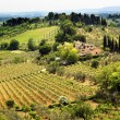 Stock Photo: TuscFarm Vineyard SGimignano Tuscany Italy