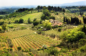 Tuscan Farm Vineyard San Gimignano Tuscany Italy — Stock Photo