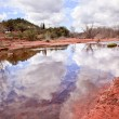 Oak Creek Downstream Reflection Sedona Arizona — Stock Photo