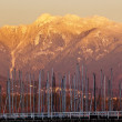 Vancouver Though Sailboat Masts Golden Snow Mountains Background — Stock Photo