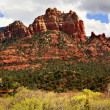 Camel Head Orange Red Rock Butte Sedona Arizona — Stock Photo