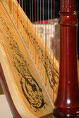 Harp closeup — Stock Photo
