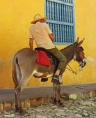 Cuban man on on donkey — Stock Photo