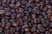 Its Coffee — Stock Photo