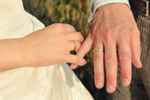 Couple's hands with wedding rings — Stock Photo