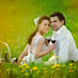 Bride and Groom drink a wine in the field of dandelion — Stock Photo