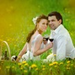Stock Photo: Bride and Groom drink a wine in the field of dandelion