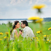 Wedding couple kissing on a grass — Stock Photo