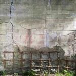 Concrete wall — Stock Photo #6008940