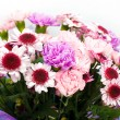 Bunch of pink flowers — Stock Photo