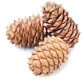 Small group of cones combined on a white background — Stok fotoğraf