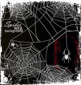Spider Web Background — Stok Vektör