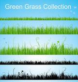 Vector grass collection — Stock Vector