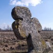 Stock Photo: Ancient cross