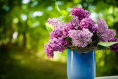 Bunch of lilac flowers — Stock Photo