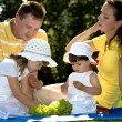 A closeup portrait of a happy family picnic - Stock Photo