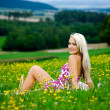 Picnic on the meadow — Stock Photo