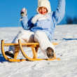 Sledding — Stock Photo #6218693