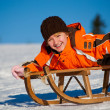 Sledding — Stock Photo #6218694