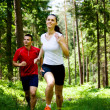Jogging in forest — Stock Photo #6219382
