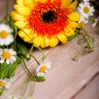 Stock Photo: Bunch of spring flowers