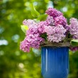 Bunch of lilac flowers - Stock Photo