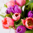 Bunch of tulips — Stock Photo #6253866