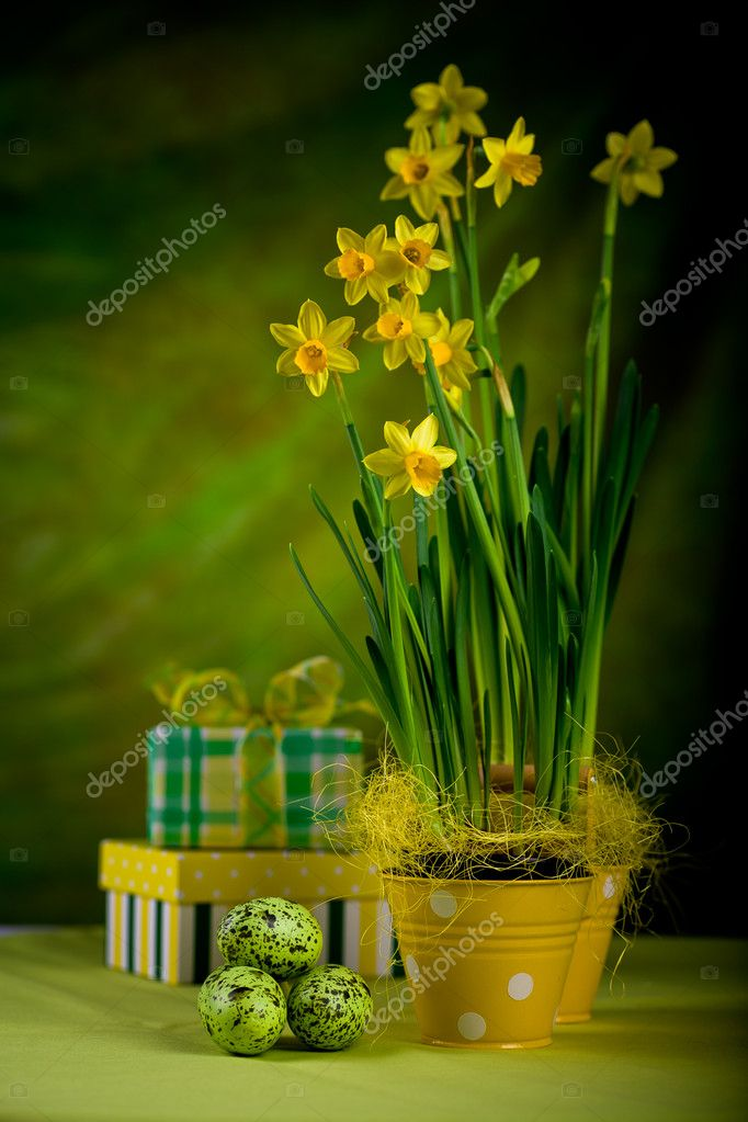The easter installation. A bouquet of daffodils and eggs. — Stock Photo #6253439