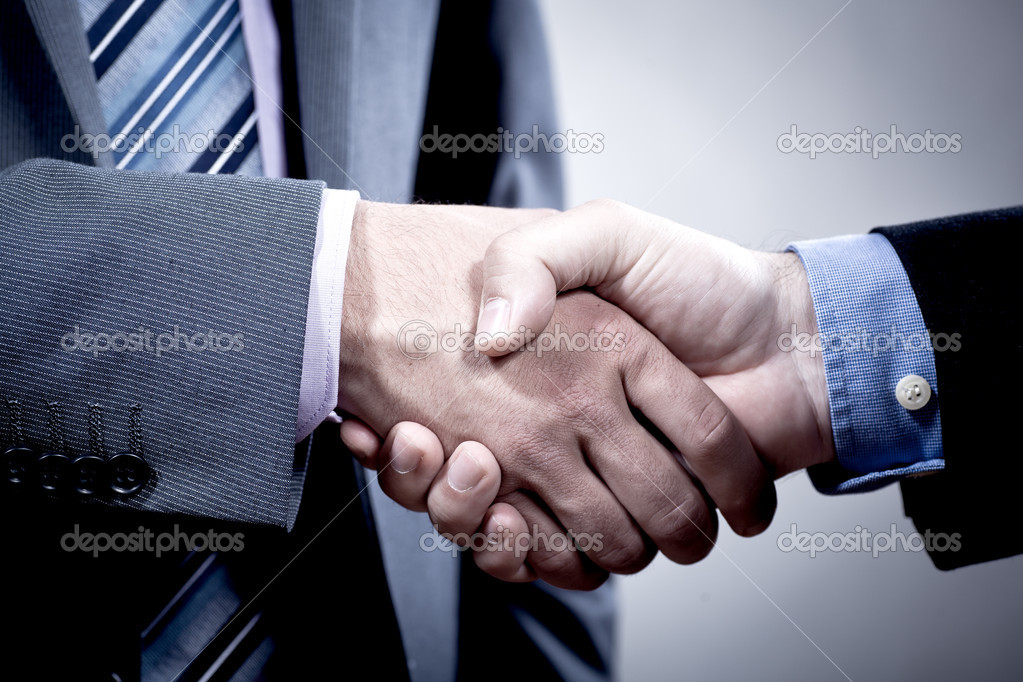 Two suited men shaking hands  Stock Photo #6253548