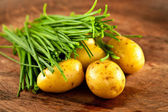 Potatoes and chives — Stock Photo