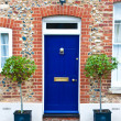 Stock Photo: Blue front door