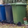 Bins - Stock Photo