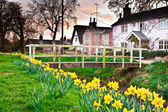 Spring village — Stock Photo