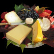 Autumn Cheese Platter — Stock Photo