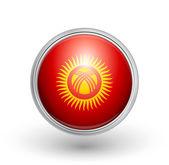 Kyrgyzstan flag — Stock Vector