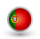 Portugal flag — Stock Vector