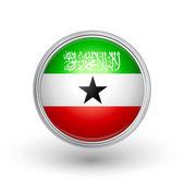 Somaliland flag — Stock Vector