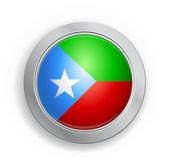 Baluchistan Flag Button — Stock Vector