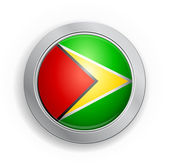 Guyana Flag Button — Stock Vector