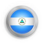 Nicaragua Flag Button — Stock Vector
