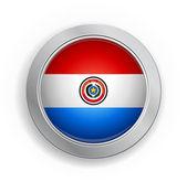 Botón de la bandera de paraguay — Vector de stock